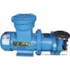 温州磁力泵厂家磁力泵购买磁力泵简介 朝阳供