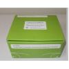 8-羟基鸟嘌呤DNA糖苷酶(OGG1)ELISA试剂盒