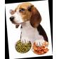 宠物食品、饲料检测
