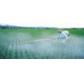 肥料登记注册理化检测