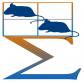 高通量动物行为视频分析系统