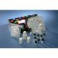 5-羟色胺受体6(HTR6)ELISA试剂盒